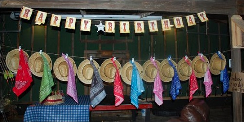 ranch themed birthday party