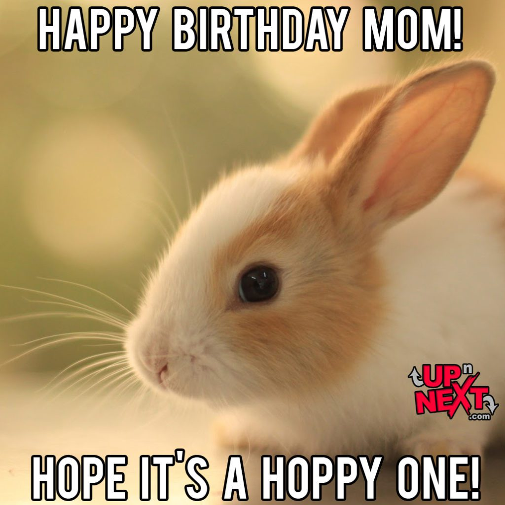 Happy Birthday Mom Cute Meme