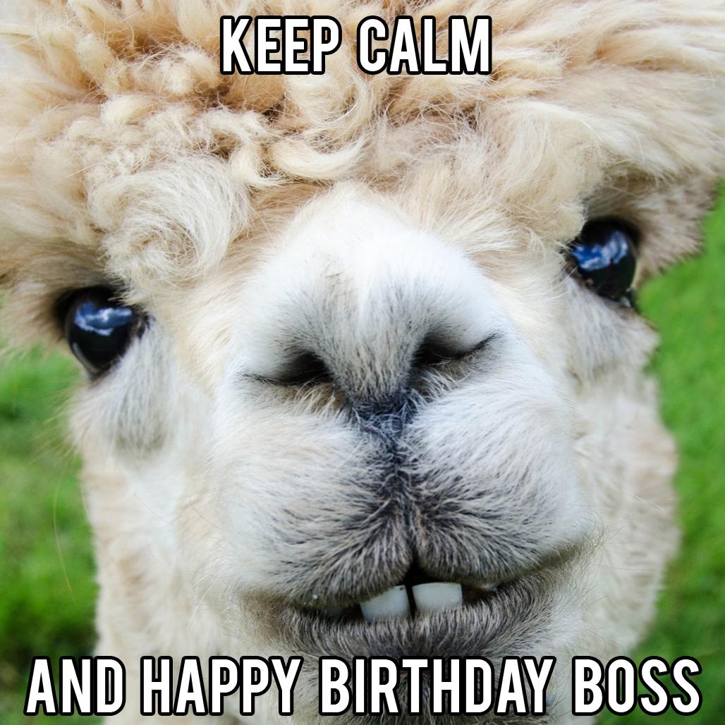 funny boss birthday