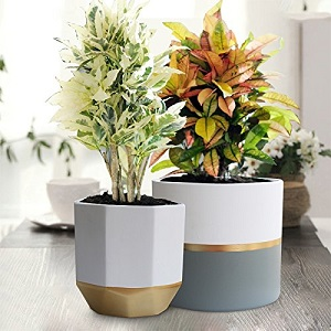 flower pot and garden planters for mothers day